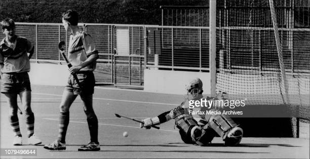 60 Top Field Hockey Goalie Equipment Pictures Photos And Images
