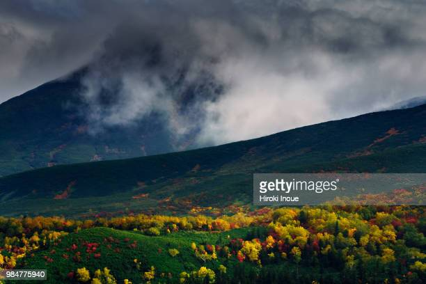 the autumn colors at the taisetsu mountain range, japan - inoue stock photos and pictures