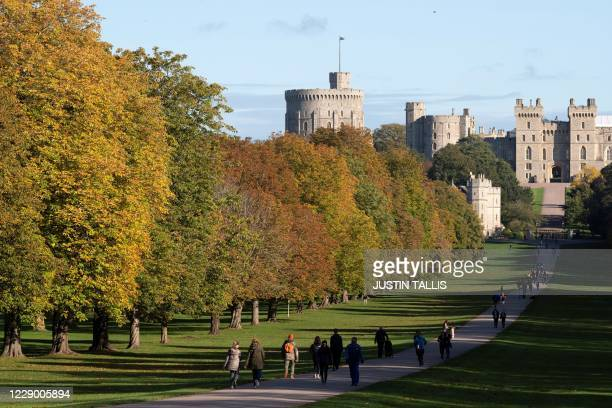 The autumn colours of the leaves on the trees line The Long Walk in Windsor Great Park, leading to Windsor Castle, west of London, as people enjoy...