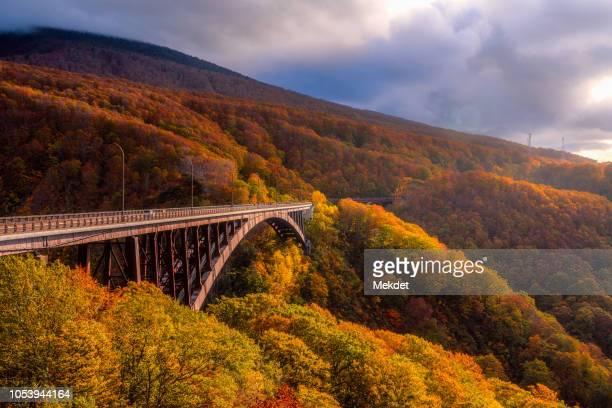 the autumn foliage with the jogakura ohashi bridge in aomori, tohoku region, japan - aomori prefecture stock pictures, royalty-free photos & images