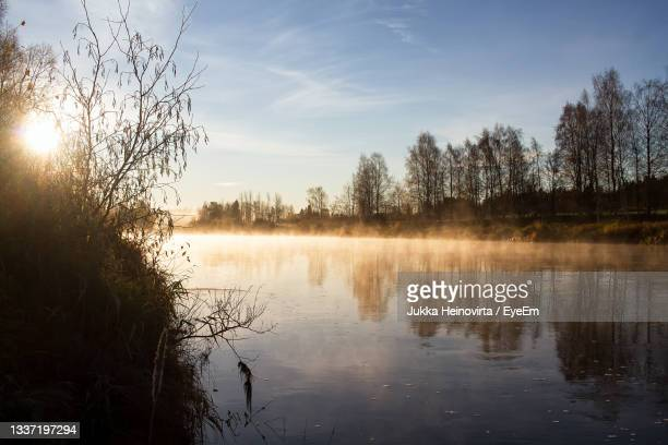 the autumn mornings are very misty at the northern finland. - heinovirta stock pictures, royalty-free photos & images