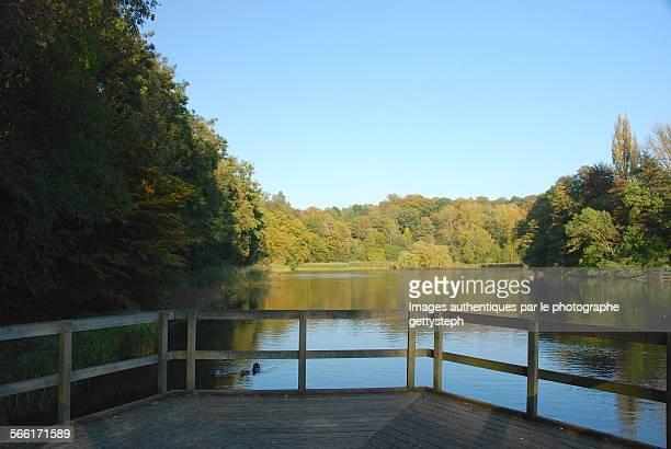 the autumn under evening light - pontoon bridge stock pictures, royalty-free photos & images