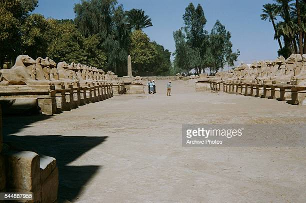 The Avenue of Sphinxes a row of ramheaded sphinxes which connects the temples of Karnak and Luxor in Egypt circa 1965