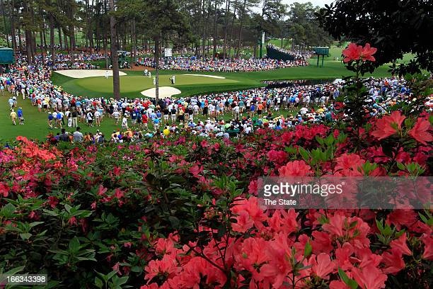 The azaleas were in full bloom overlooking the 16th green during the first round of the Masters at Augusta National Golf Club in Augusta, Georgia,...