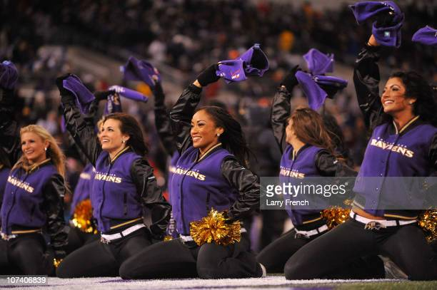 The Baltimore Ravens cheerleaders cheer against the Pittsburgh Steelers during the second quarter of the game at MT Bank Stadium on December 5 2010...