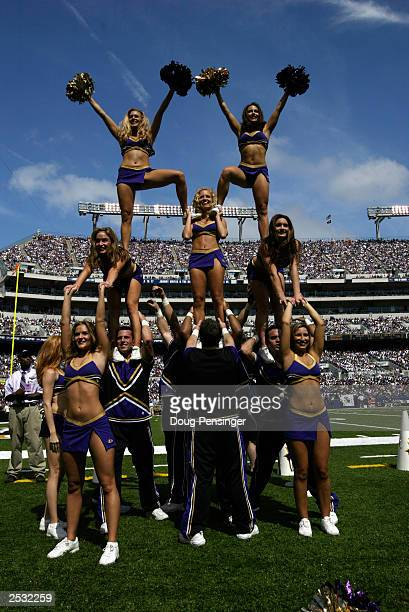 The Baltimore Ravens cheerleaders perform there routine as the Baltimore Ravens take on the Cleveland Browns on September 14 2003 at the MT Bank...