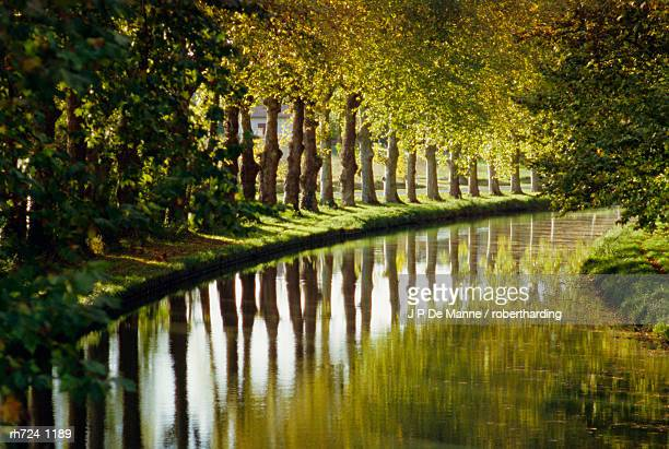 the bank of the hure, canal lateral a la garonne, gironde, aquitaine, france, europe - vista lateral stock pictures, royalty-free photos & images