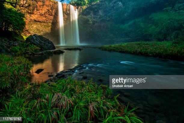 the base of wailua falls, kauai, hawaii - wildnis stock-fotos und bilder