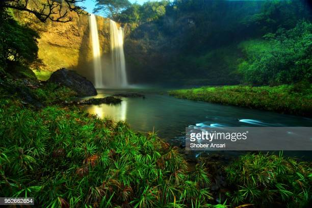 the base of wailua waterfall, kauai, hawaii - water fall hawaii stock pictures, royalty-free photos & images