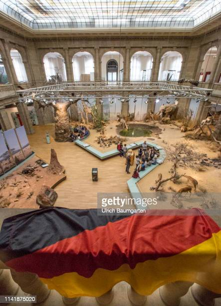 The Basic Law celebrates 70th birthdayThe Zoological Research Museum Alexander Koenig in Bonn Place of birth of the Basic Law for the Federal...