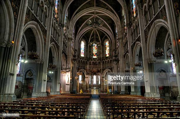 the basilica of our lady of the immaculate conception - our lady of lourdes stock pictures, royalty-free photos & images