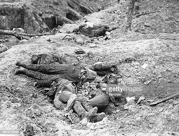The Battle of Guillemont Flies infest the bodies of the German dead at the sunken road at Guillemont 8th September 1916