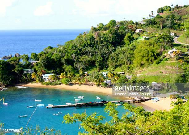 the bay by the sea - brianne stock pictures, royalty-free photos & images