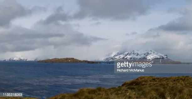 the bay of isles - zuid georgia eiland stockfoto's en -beelden
