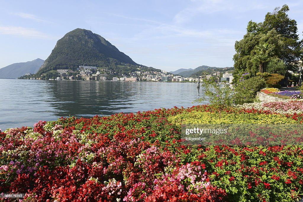 The bay of lake Lugano : Stock Photo