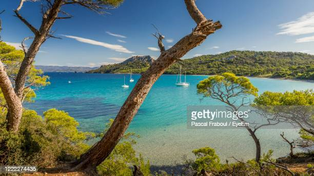 the bay of the alycastre and its beach notre dame on the island of porquerolles - french riviera stock pictures, royalty-free photos & images