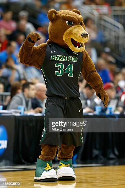 Baylor Bears Mascot Pictures And Photos
