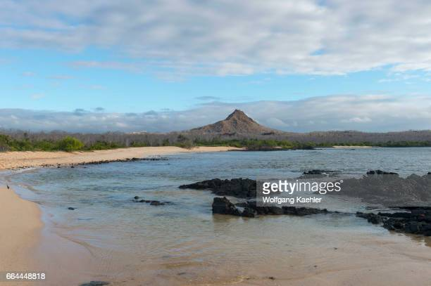 The beach at Cerro Dragon on the west coast of Santa Cruz Island in the Galapagos Islands Ecuador
