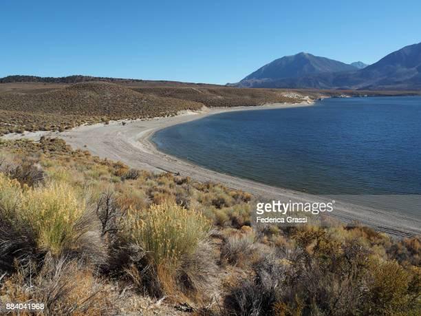 The Beach at Crowley Lake, California