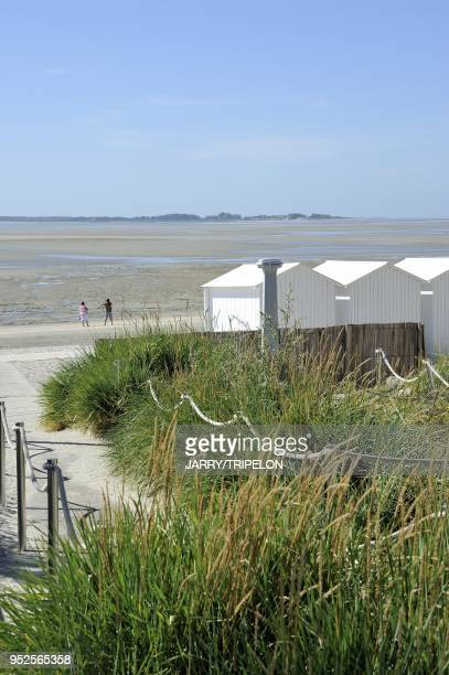 The beach huts at Le Crotoy Baie de Somme and Cote d'Opale area Somme department Picardie region France