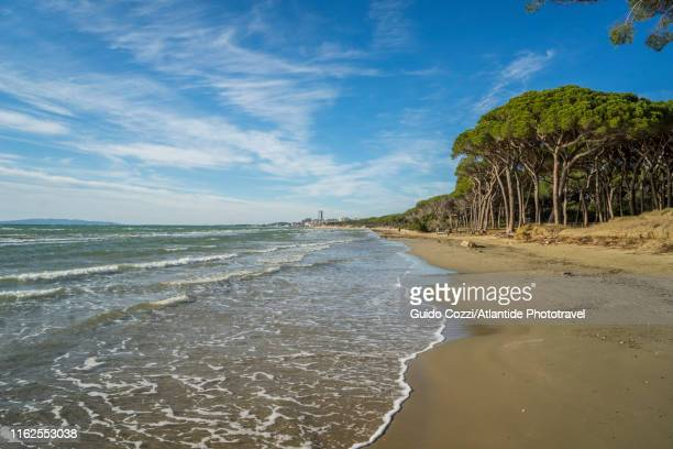 the beach near the town of follonica - image stock-fotos und bilder