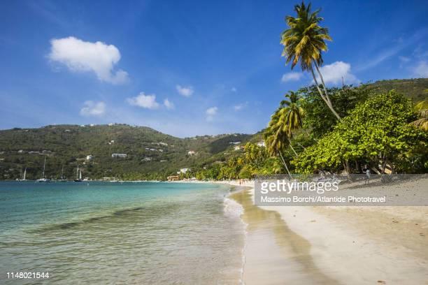 the beach of cane garden bay - cane garden bay stock pictures, royalty-free photos & images
