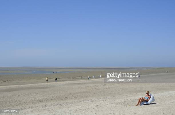 The beach of Le Crotoy at low tide Baie de Somme and Cote d'Opale area Somme department Picardie region France