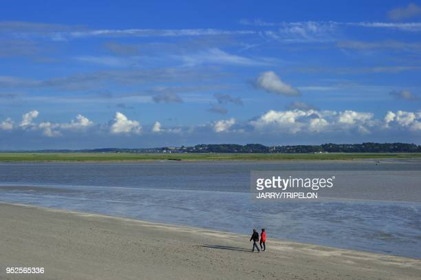 The beach of Le Crotoy Baie de Somme and Cote d'Opale area Somme department Picardie region France