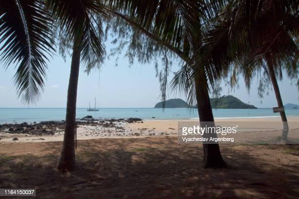 the beach on tropical koh mak island, thailand - golf von thailand stock-fotos und bilder