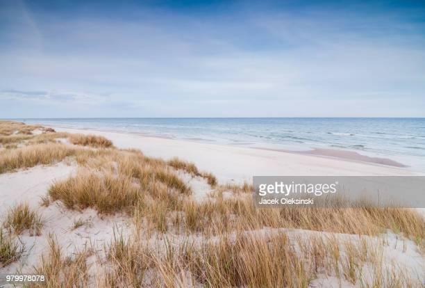 the beach - sanddüne stock-fotos und bilder