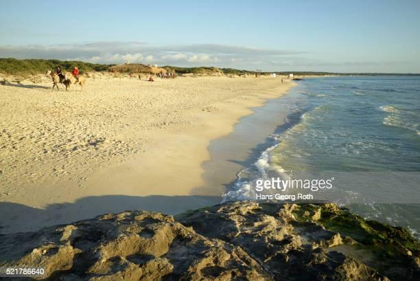 The beach 'Platja d'es Trenc'