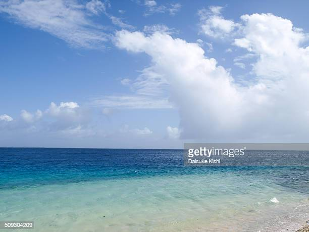 The beach with blue sky and clouds