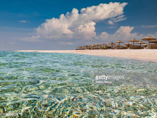 the beach with clear water in egypt. coast of the red sea. summer holiday - sharm el sheikh foto e immagini stock