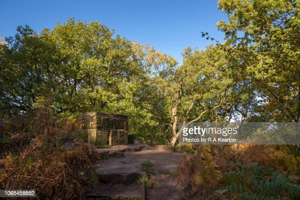 The Beacon, Alderley Edge, Cheshire, England