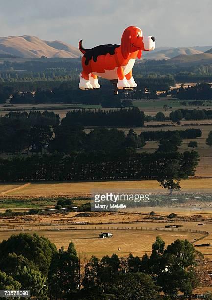 The Beagle Maximus Hot Air Balloon glides across the Wairarapa plains as part of the mass ascension during the Wairarapa International Hot Air...