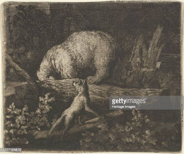 The Bear with His Snout and Forepaws Caught in the Trunk of a Tree From Hendrick van Alcmar's Renard The Fox mid17th century Second state of five...