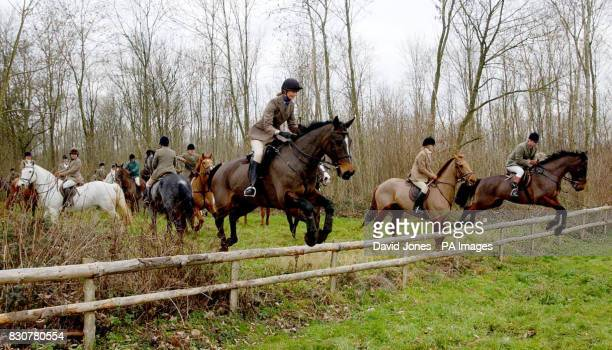 The Beaufort Hunt gathers at Badminton A handful of hunts including those in north Wales and Northamptonshire will ride for the first time in 10...