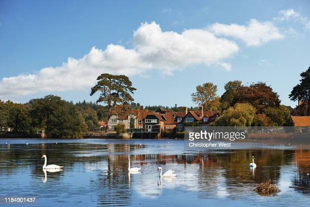 the beautiful beaulieu - hampshire england stock pictures, royalty-free photos & images