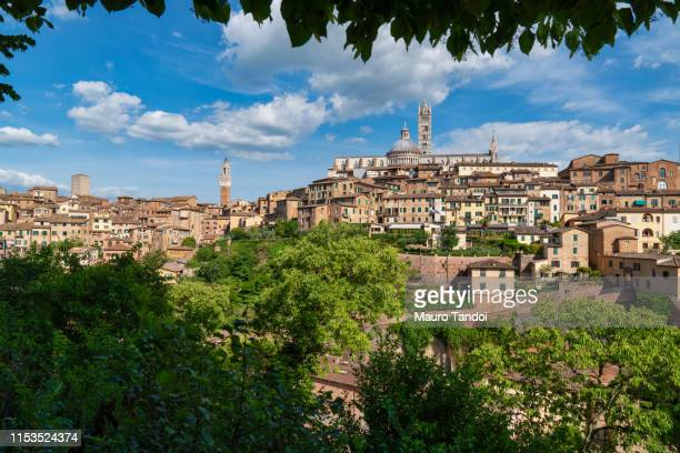 the beautiful city of siena, tuscany, italy - mauro tandoi foto e immagini stock