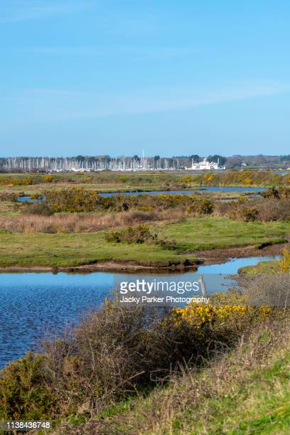 the beautiful coastal marshes and lagoons of the lymington and keyhaven nature reserve on the edge of the solent overlooking the isle of wight - keyhaven stock photos and pictures