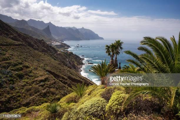 the beautiful coastline of tenerife - isla de tenerife fotografías e imágenes de stock