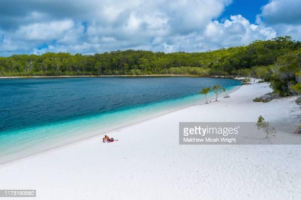 the beautiful coastline of the freshwater lake mackenzie. - süßwasser stock-fotos und bilder