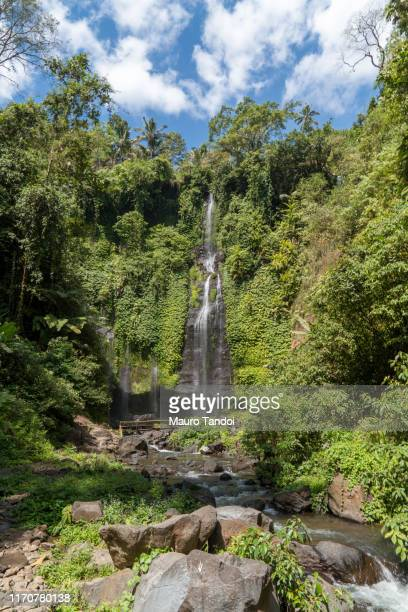 "the beautiful ""fiji waterfall"", bali island, indonesia - mauro tandoi foto e immagini stock"