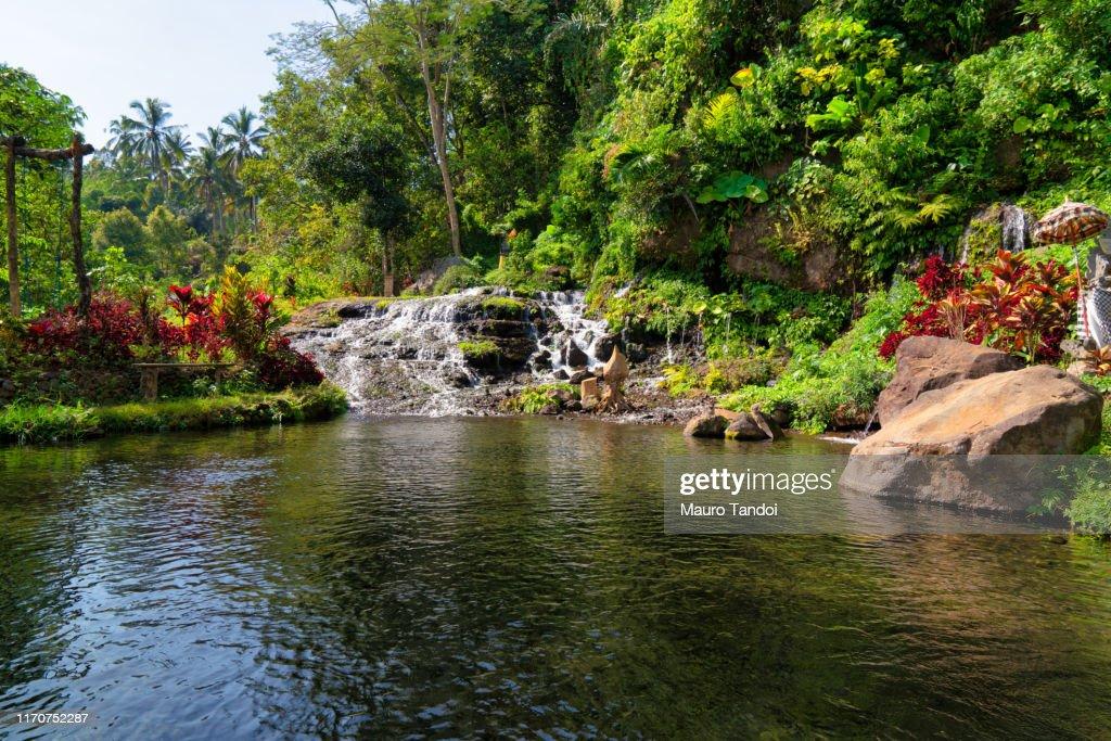 The beautiful heart of Bali Island, Indonesia : Foto stock