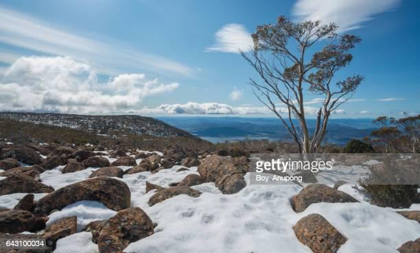 The beautiful landscape of Mount Wellington in winter season of Habart the capital cities of Tasmania state, Australia.