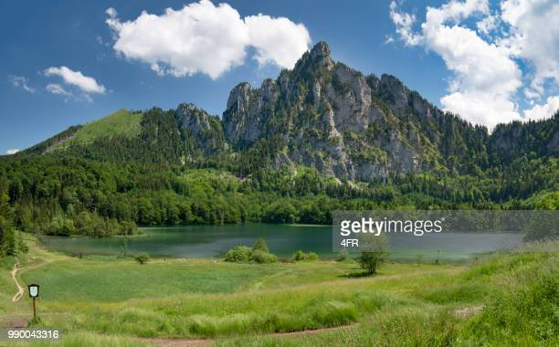 the beautiful laudachsee with mountain katzenstein, austrian alps, austria - upper austria stock pictures, royalty-free photos & images