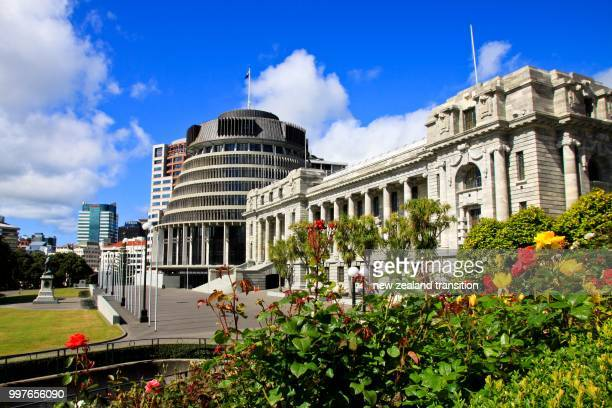 the beehive & parliament buildings with spring roses in foreground, wellington - wellington new zealand stock photos and pictures