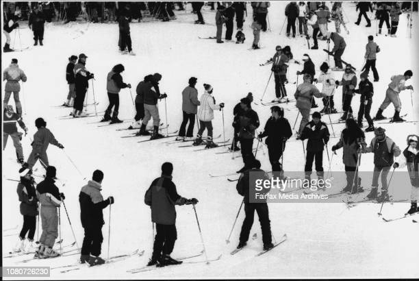 The beginners' area was crowded with wouldbe ski instructors Parents pushed children on tiny skis shouting 'Snowplough snowplough' Experienced skiers...