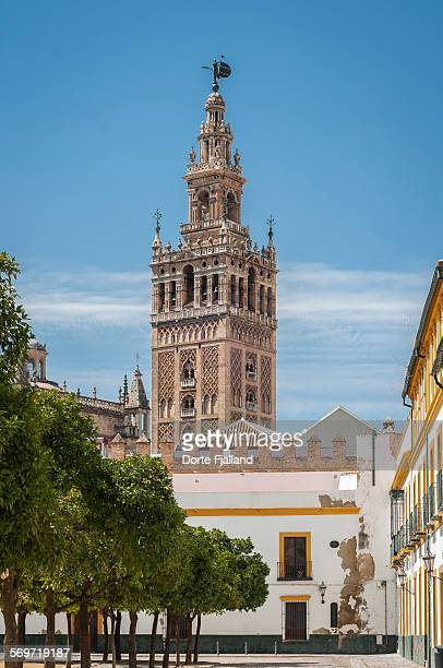 the bell tower of la giralda - dorte fjalland stock pictures, royalty-free photos & images