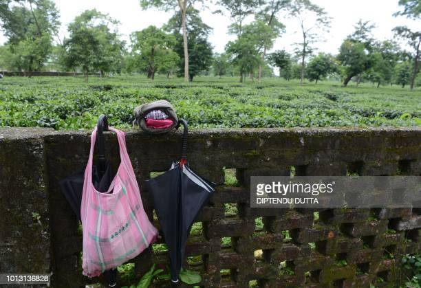 TOPSHOT The belongings of a tea plantation worker are pictured near a a field where workers of an opposing union not supporting the strike work...